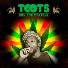 Concierto de Toots & The Maytals + Barrington Levy + Julian Marley & The Uprising + otros en Recinto de Festivales Rototom Sunsplash en Castellón
