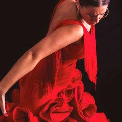 Espectáculo Flamenco en Cardamomo en Madrid