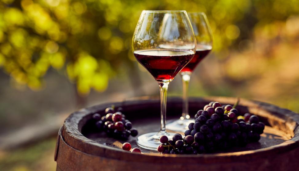 Planes para que los amantes del vino disfruten en casa