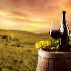 Enoturismo en Galicia. Descubre el alma de vinos únicos