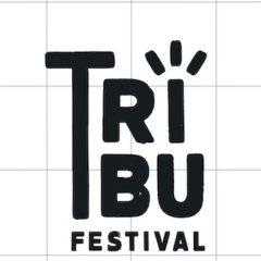 Se suspende el 'Festival Tribu' de Burgos