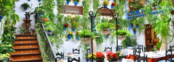 Terraza y Patios con la reapertura de Restaurante Puerta Sevilla y Restaurante Posada del Caballo Andaluz
