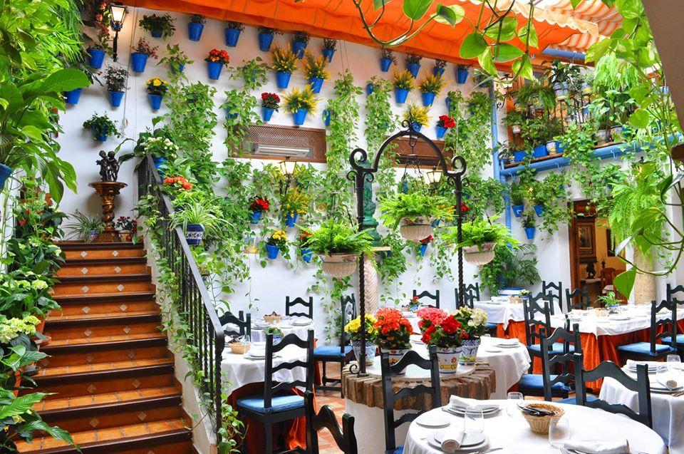 terraza y patios puerta sevilla
