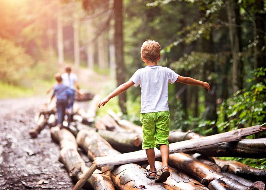Verano con Ambiente es un proyecto de educación ambiental en los pueblos de Burgos durante julio y agosto