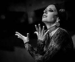 «Cafe Cantante» ciclo de baile flamenco se reanuda en la Plaza del Potro, del Miércoles 24 al 29 de Julio