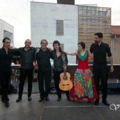 Tardes Flamencas: Grupo Flamenco Duende en el Palacio de la Isla