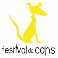 Festival de Cans; festival de cine en O Porriño