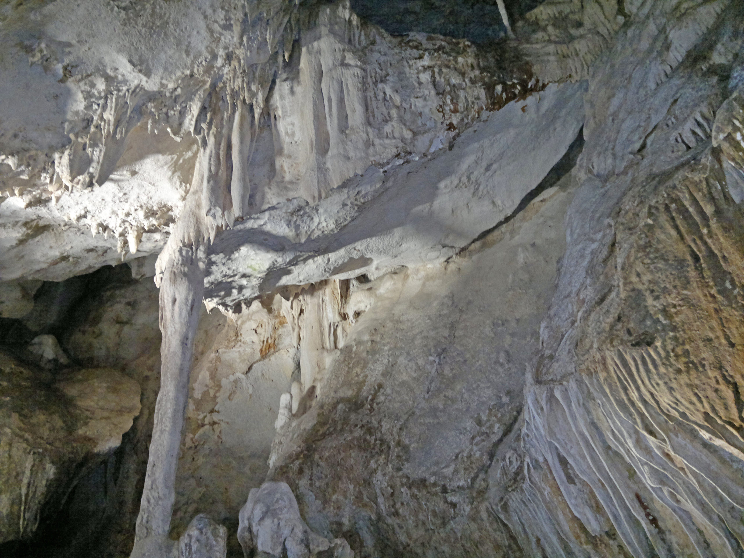 Reapertura de la Cueva de los Murciélagos en Zuheros(Córdoba)