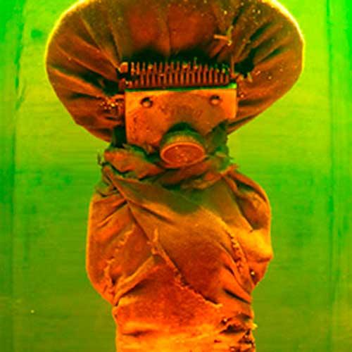 Álvaro Ledesma. Submarionnettes en Aquarium en Gipuzkoa