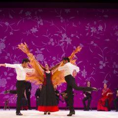 La Junta destina 10.000 euros con el Programa Flamenco Viene del Sur en Gira en Priego de Córdoba