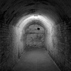 Espe Pons. Bajo la luz del mar en Museo Palau Solterra de Fotografía Contemporánea en Girona