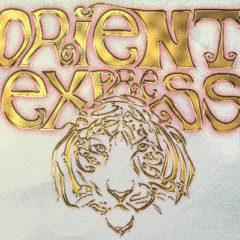 Orient Express (Circo Gran Fele) en Teatro Auditorio Adolfo Marsillach en Madrid