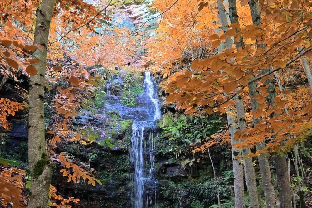 1 Senda de las Cascadas de Altuzarra min