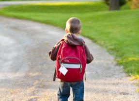 IV Jornadas de DISLEXIA. Caminar en la Escuela con Dislexia