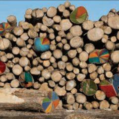 Exposición: 'Un-Steady. n problemas ambientales' de Eduardo Cortils en el CAB