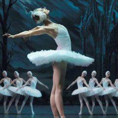 El Lago de los Cisnes, ballet en el teatro Afundación de Vigo