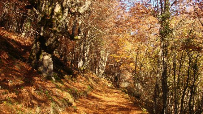 Rutas en Burgos