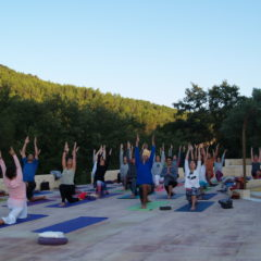 Sumérgete en el Yoga Integral