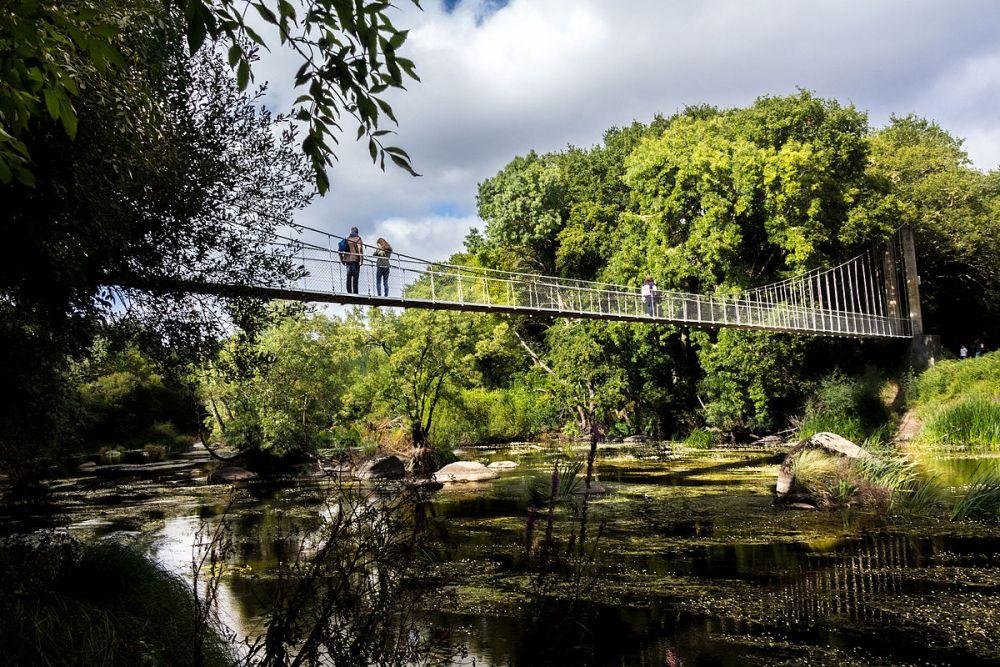 Puente Colgante en la Insua de Seivane