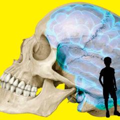 Talking Brains en CaixaForum Zaragoza