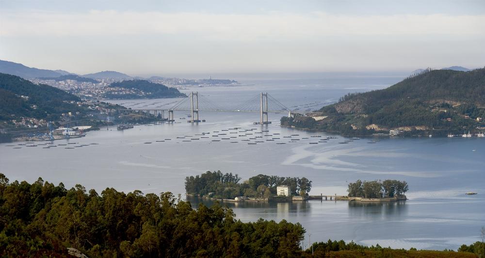 Ría de Vigo Pontevedra