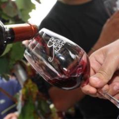 Rioja Alavesa, mucho más que vino