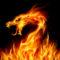 A la caza del Dragón! Descubre los dragones que habitan en Aragón