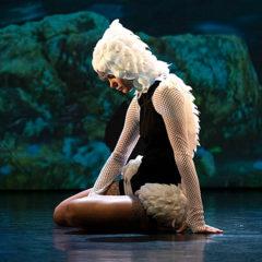 El Lago de los Cisnes 3D en Teatro San Francisco en Cádiz