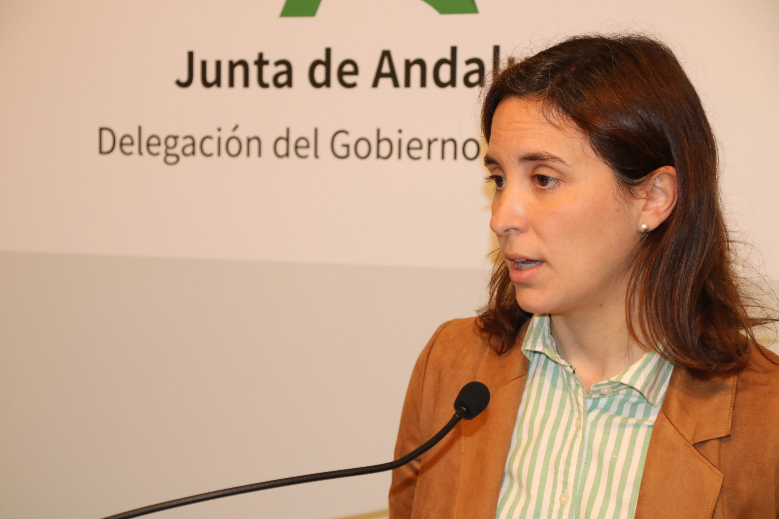 """Casanueva, ha afirmado que """"los presupuestos de 2021 van a suponer la consolidación del sector cultural y patrimonial de la provincia de Córdoba""""."""