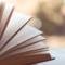 Siete nuevas recomendaciones de libros para esta semana