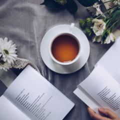 Los siete nuevos títulos de libros recomendados de esta semana