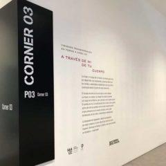 Visiones transversales en torno a Circa XX en Instituto Aragonés de Arte y Cultura Contemporáneos Pablo Serrano  en Zaragoza