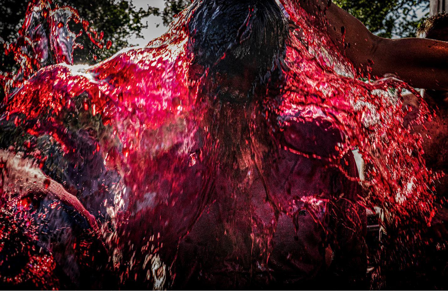Primer premio concurso de fotografía La Rioja Capital