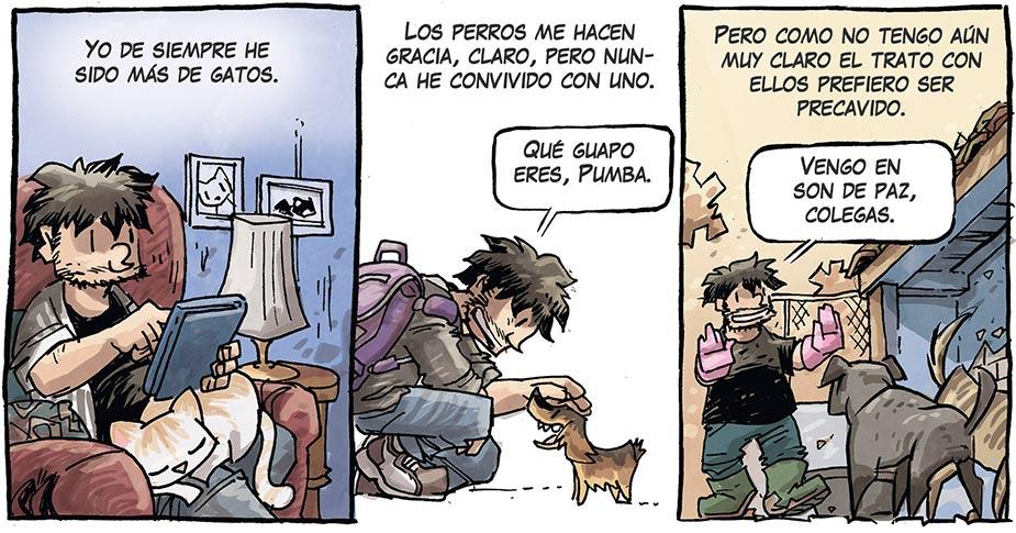 refugio comic animales 3