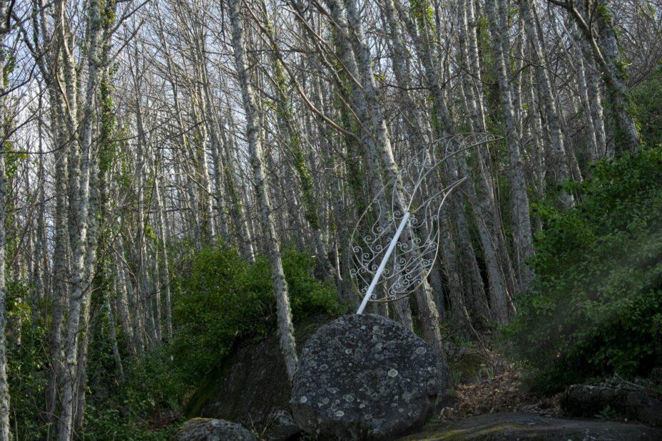 Bosque de los Espejos.