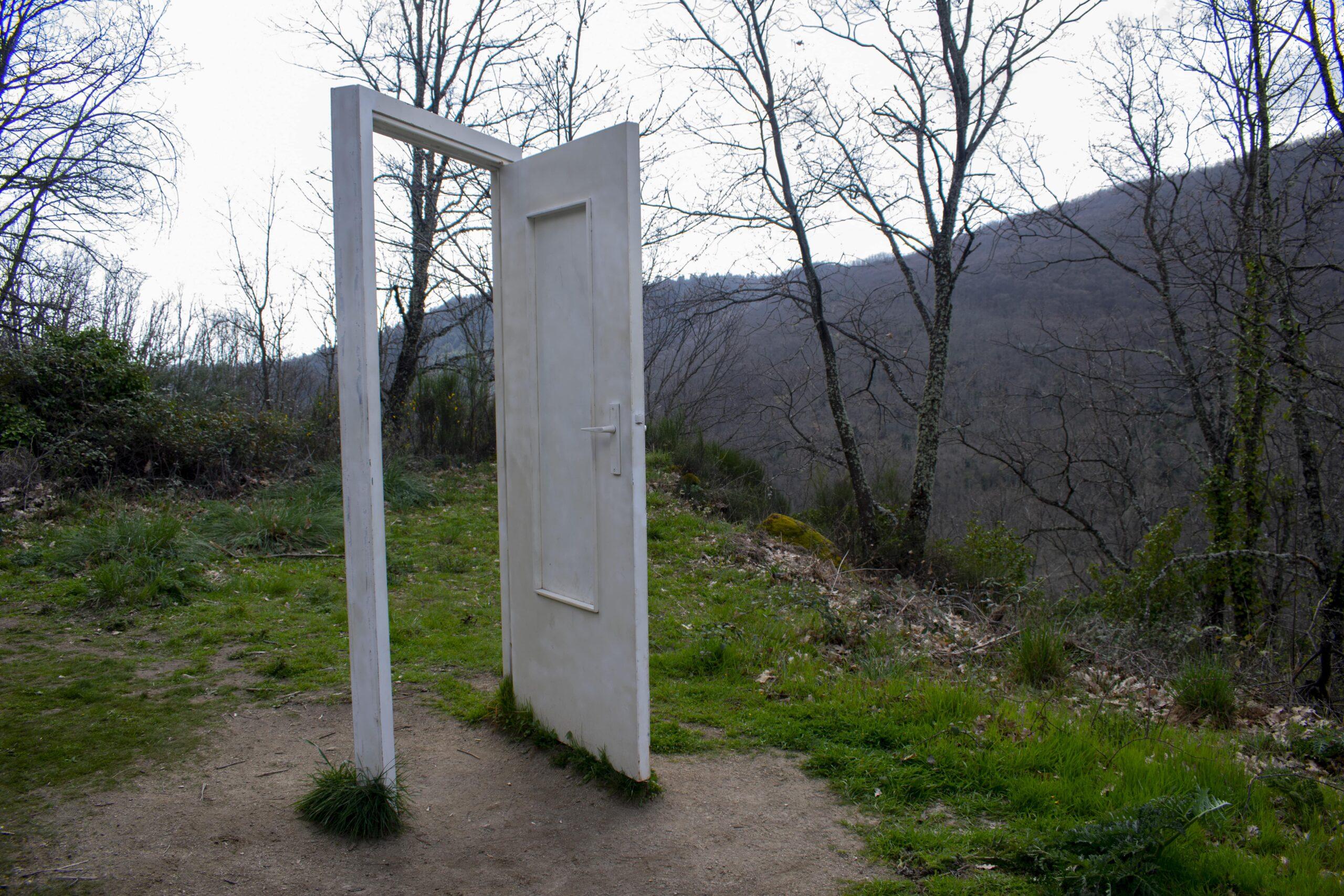 Bosque de los Espejos. Puerta