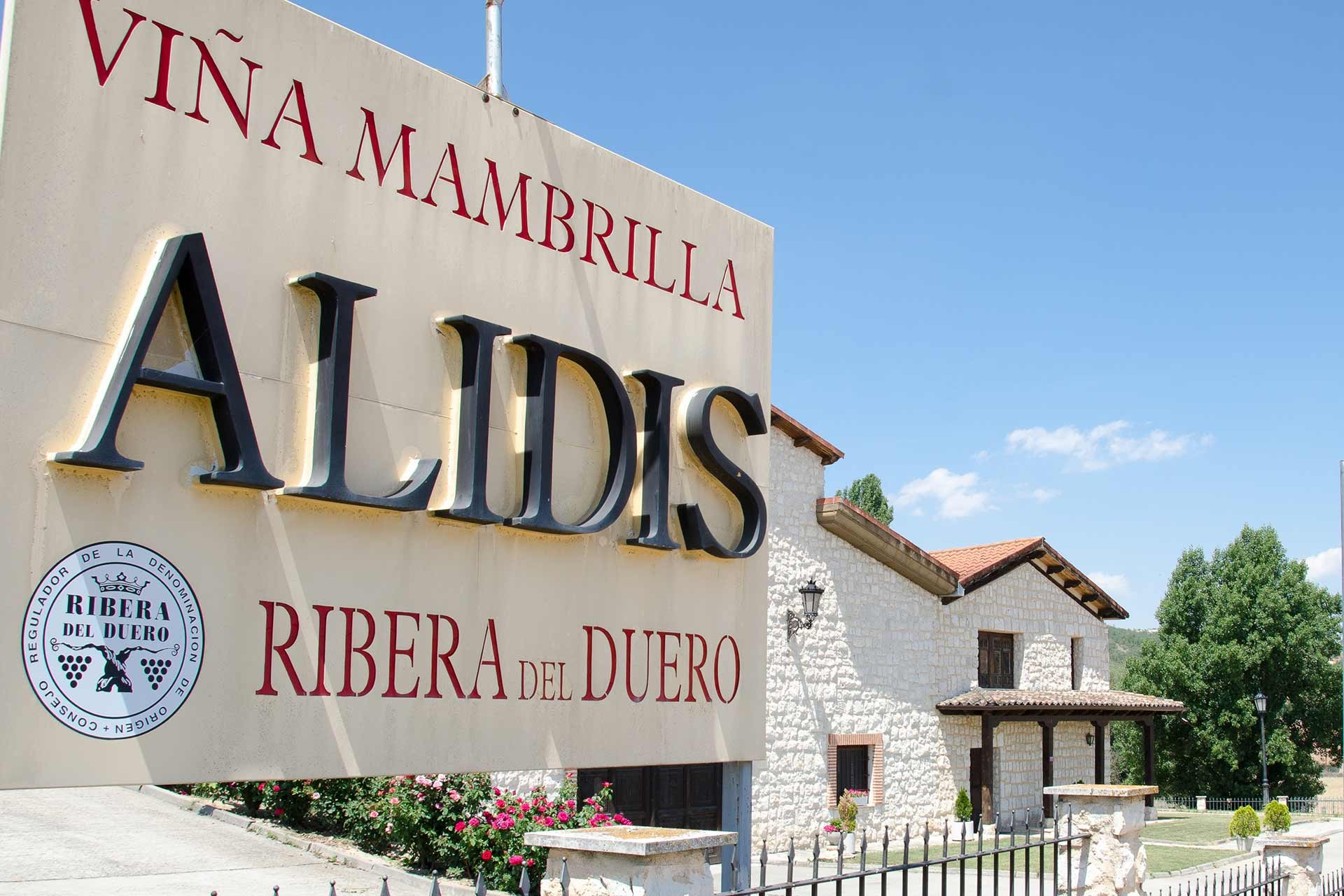 Viña Mambrilla y vino Alidis