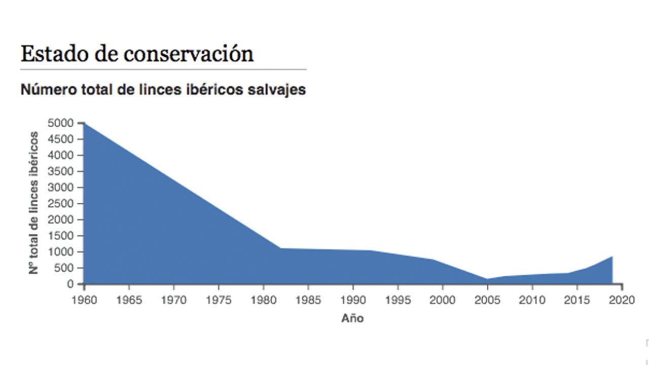 Grafico conservacion Lince Iberico