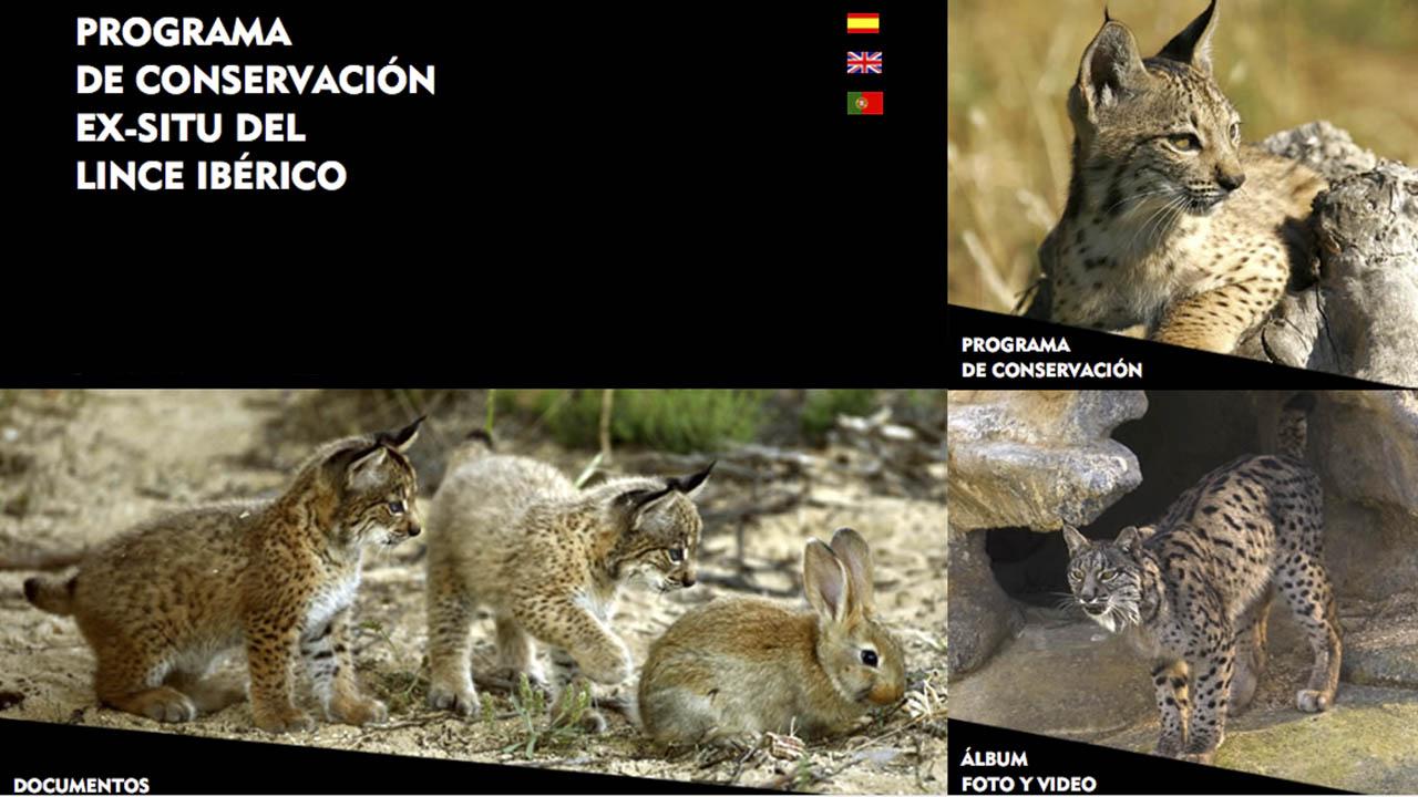 Programa de Conservacion Ex Situ del Lince Iberico