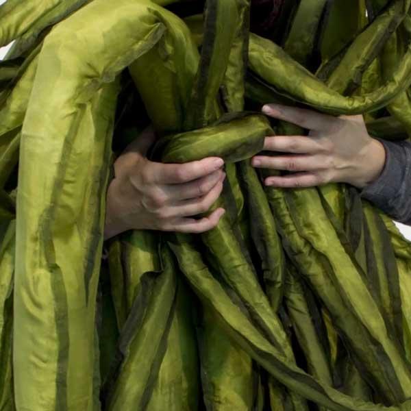 un encuentro vegetal patricia dominguez ingela ihrman y eduardo navarro