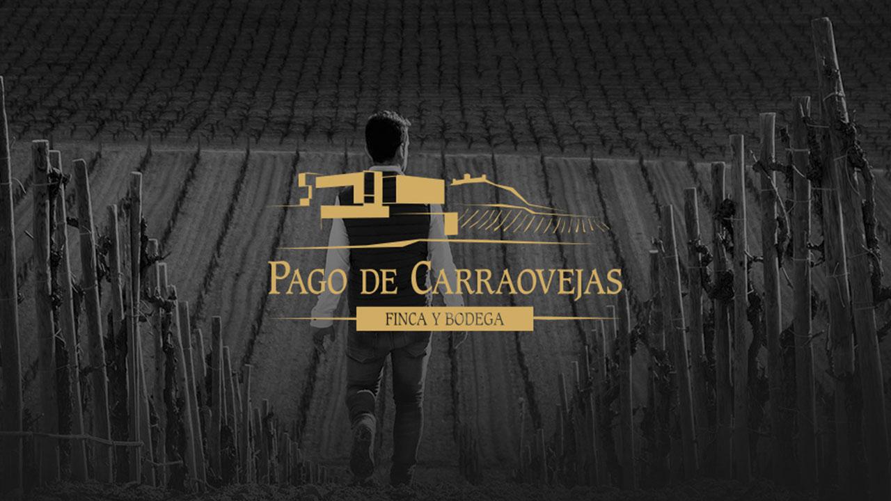 Pago de Carraovejas by pagodecarraovejas.com