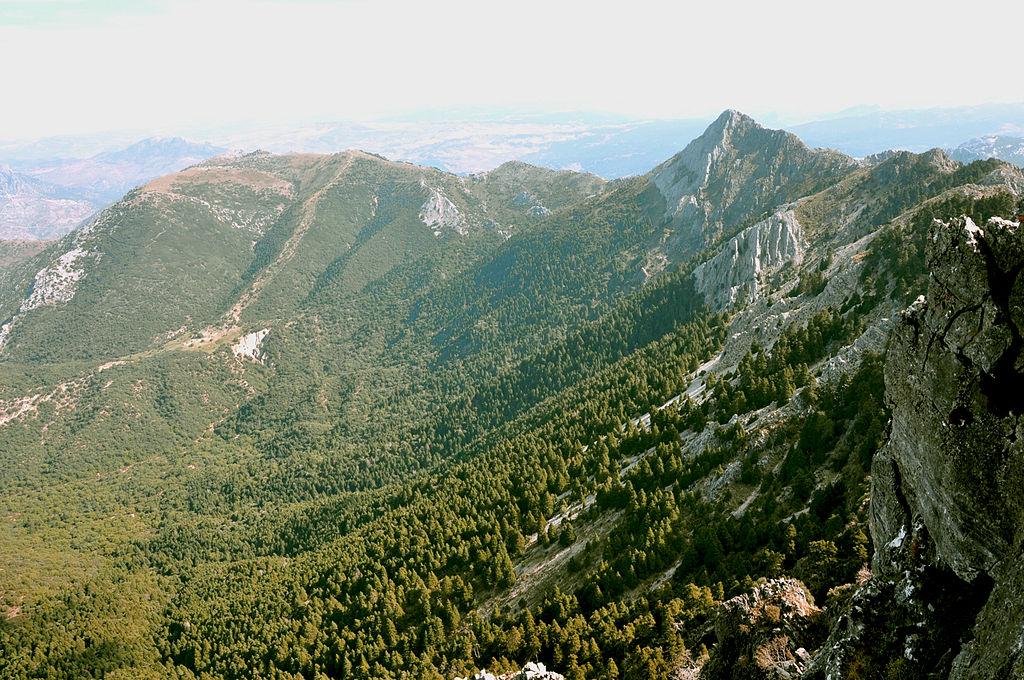 Sierra del Pinar.