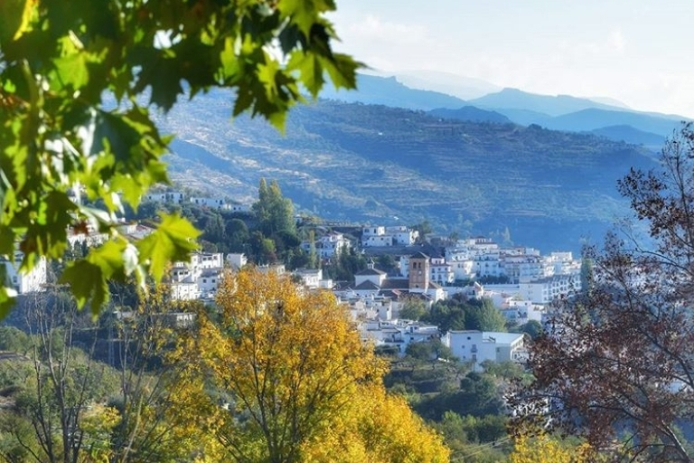 Valor Granada