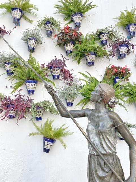 El aroma de los patios de cordoba
